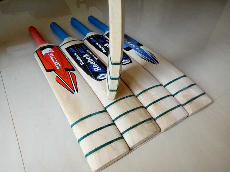 Softball Cricket Bat