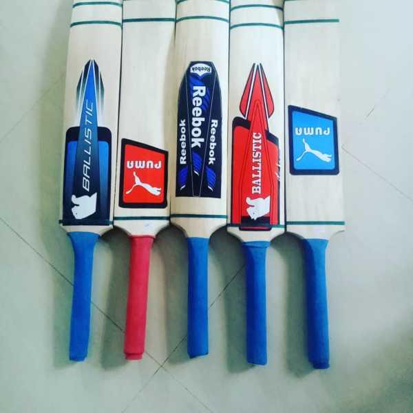 Softball cricket bat